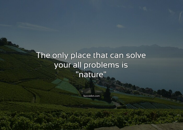 inspirational nature quotes to make you feel more alive succedict